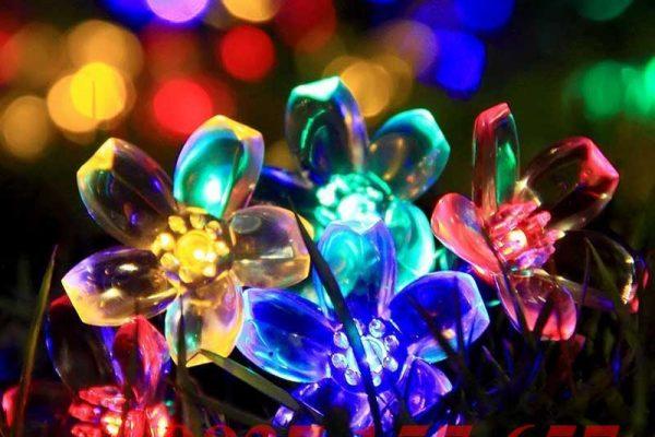 Đèn LED dây trang trí năng lượng mặt trời